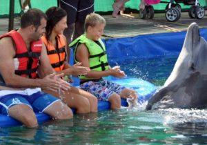 Marmaris Meet The Dolphins
