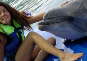 Meet The Dolphins In Icmeler