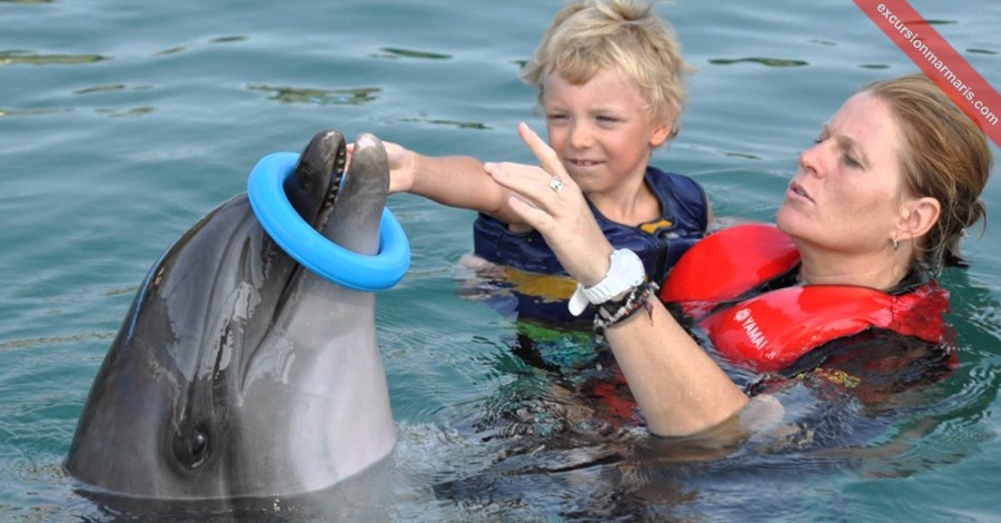 Swim With Dolphins In Marmaris 68 163 Free Hotel Transfer