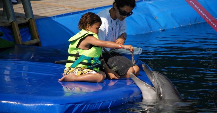 Marmaris Dolphin Park